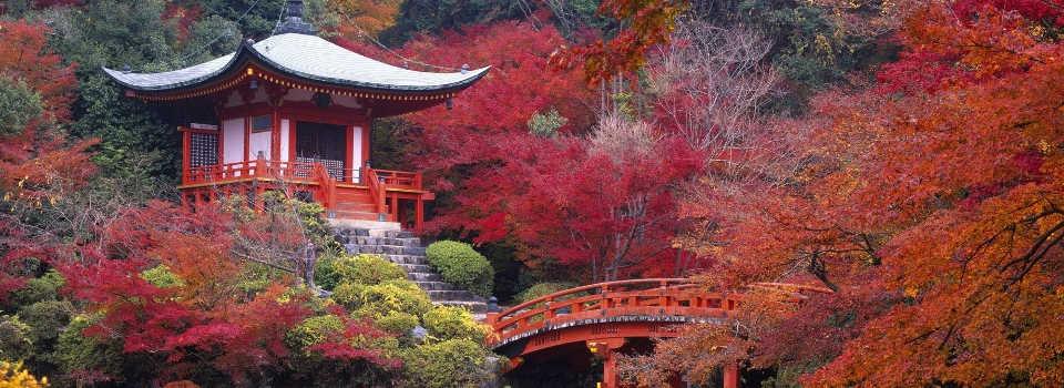 giappone-pagoda