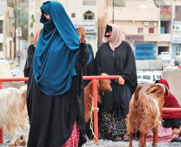 L'Oman di Renata e Mario